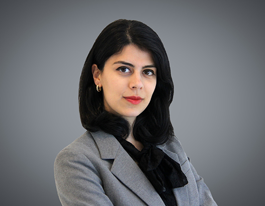 Anna Alizadeh, Lawyer in Wills, Trusts and Estates Group at WeirFoulds